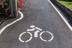 Das Zeichen des Fahrradweges markiert auf der Straße, Ökologiekonzept Stockbild