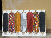 Das Zeigen des trockenen Maiskolbens in den verschiedenen Farben malen, San Juan, Guatemala lizenzfreie stockfotos