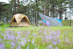 Das Zelt auf Campingplatz Lizenzfreie Stockfotografie