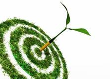 Das Ziel ist die Umwelt stock abbildung