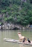 Das zwei Kormoran- und Bambusfloss Lizenzfreie Stockfotos