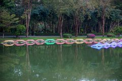 Dasada die Bloesemfestival geven bij dasadagalerij, Prachinburi, Thailand van Dec2,2017 tot Feb28,2018: LEIDEN Licht omhoog in de Stock Foto