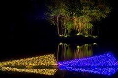 Dasada die Bloesemfestival geven bij dasadagalerij, Prachinburi, Thailand van Dec2,2017 tot Feb28,2018: LEIDEN Licht omhoog in de Stock Afbeeldingen