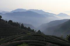 Dasan della contea di Anxi, porcellana fotografia stock libera da diritti