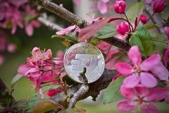 Dash coin - silver. Silver Dash coin. Cryptocurrency physical silver dashcoin stock photography