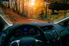 The dashboard of the car. Car in autumn forest Royalty Free Stock Images