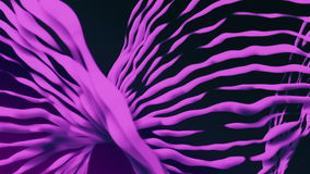Dashed rotating lines in purple color. In background stock video footage
