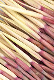 Dasheen flower stems. Many dasheen flower stems on display on market Stock Images