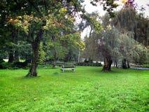 dask在公园 库存图片