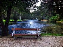 dask en parc Photo libre de droits