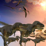 Daspletosaurus Dinosaurs Stock Photography