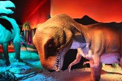 Daspletosaurus. This is a model of prehistorical animal named Daspletosaurus Royalty Free Stock Image