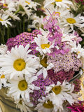 Dasy flower bouquet. Bouquet of fresh cut daisies and other flowers at farm market royalty free stock image