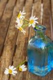 Dasy flowers posy in blue pot. Fresh dasy flowers posy in blue glass pot royalty free stock photos