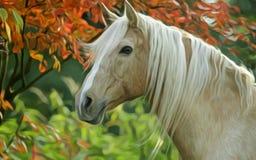 Dat paard Stock Afbeelding