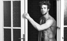 Dat was grote nacht Kerel het aantrekkelijke minnaar verleidelijk stellen De sexy macho verfomfaaide deur van de haar die uit sla royalty-vrije stock foto