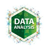 Data Analysis floral plants pattern green hexagon button. Data Analysis Isolated on floral plants pattern green hexagon button vector illustration