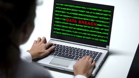 Data breach attack on laptop computer, woman working in office, cybercrime. Stock photo royalty free stock photos