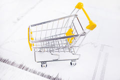 Data charts on the shopping cart Stock Photos