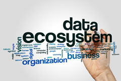 Data ecosystem word cloud concept on grey background.  royalty free stock photography