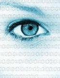 Data eye Stock Photo