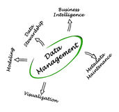 Data Management. Important components of Data Management Stock Image