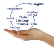 Data Mining Process. Woman presenting Data Mining Process Royalty Free Stock Photo