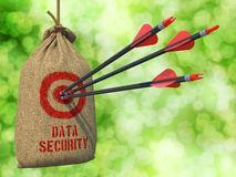 Data Security - Arrows Hit in Target. Royalty Free Stock Photos
