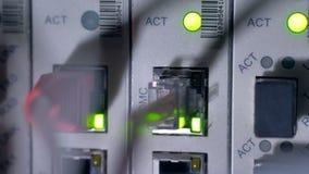 Flashing LED lights of working data server. 4K. stock footage