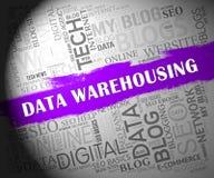 Data som Warehousing den 2d illustrationen för Datacenter resurslagring royaltyfri illustrationer