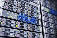 Databas och förbinder serveren Royaltyfri Bild