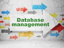 Database concept: arrow with Database Management on grunge wall background. Database concept:  arrow with Database Management on grunge textured concrete wall Royalty Free Stock Images