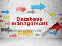 Database concept: arrow with Database Management on grunge wall background. Database concept:  arrow with Database Management on grunge textured concrete wall Stock Photos