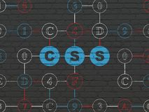 Database concept: Css on wall background. Database concept: Painted blue text Css on Black Brick wall background with Hexadecimal Code Royalty Free Stock Photos