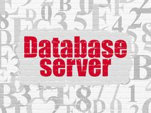 Database concept: Database Server on wall background. Database concept: Painted red text Database Server on White Brick wall background with  Hexadecimal Code Royalty Free Stock Photo