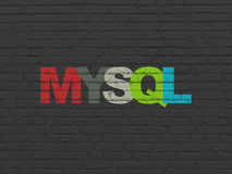 Database concept: MySQL on wall background Royalty Free Stock Photos