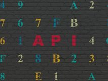 Database concept: Api on wall background. Database concept: Painted red text Api on Black Brick wall background with Hexadecimal Code Royalty Free Stock Photos
