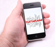 Database word cloud on hand holding Modern touch screen phone Royalty Free Stock Photo