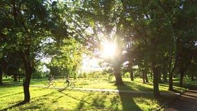 Datación cariñosa joven de los pares mientras que el montar monta en bicicleta en el parque metrajes