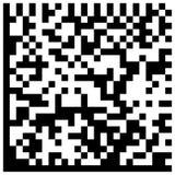 DataMatrix编码。 免版税图库摄影