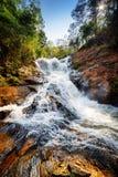 Datanla瀑布的美丽的景色用透明的水 免版税图库摄影