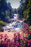 Datanla waterfall bridge Royalty Free Stock Photography