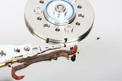dataviruset avmaskar Arkivbild