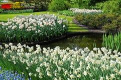 Datch garden in spring Stock Photo