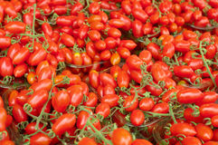 Date Cherry Tomatoes. Piles of fresh Date Cherry Tomatoes Royalty Free Stock Images