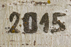 Date  2015 engraved in a tree Royalty Free Stock Image