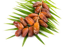 Date fruits Royalty Free Stock Photos