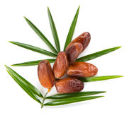 Date fruits and leaf of palm, top wiew Stock Photo