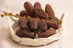 Date Fruits. On a wooden table Stock Photos