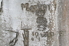 Date & Initials Carved Into A Tree Trunk Royalty Free Stock Images